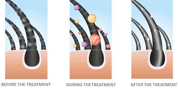 TREATMENT-HAIR-REPAIR